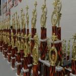 Karate Tournament Awards